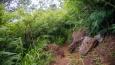 Nounou East Trail