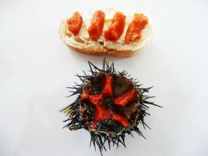 Тартин с морским ежом