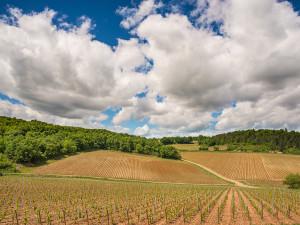 Бургундия, Франция