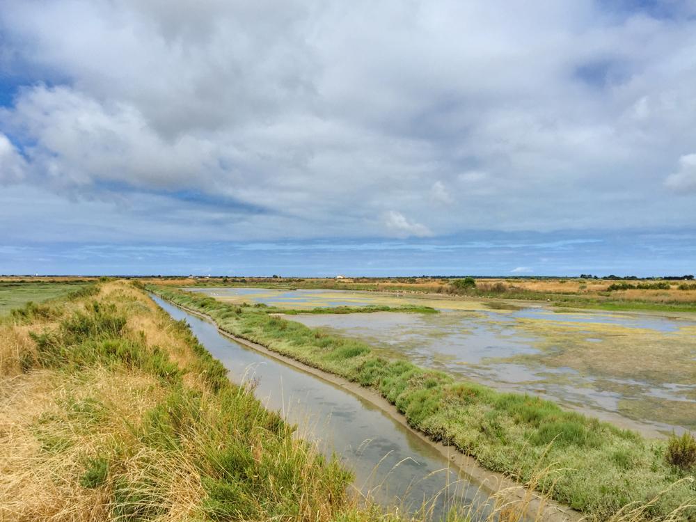 Соляные болота острова Ре