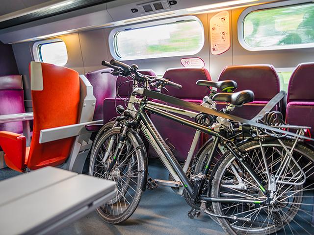 Велосипеды успели сесть в поезд и едут довольные!:)