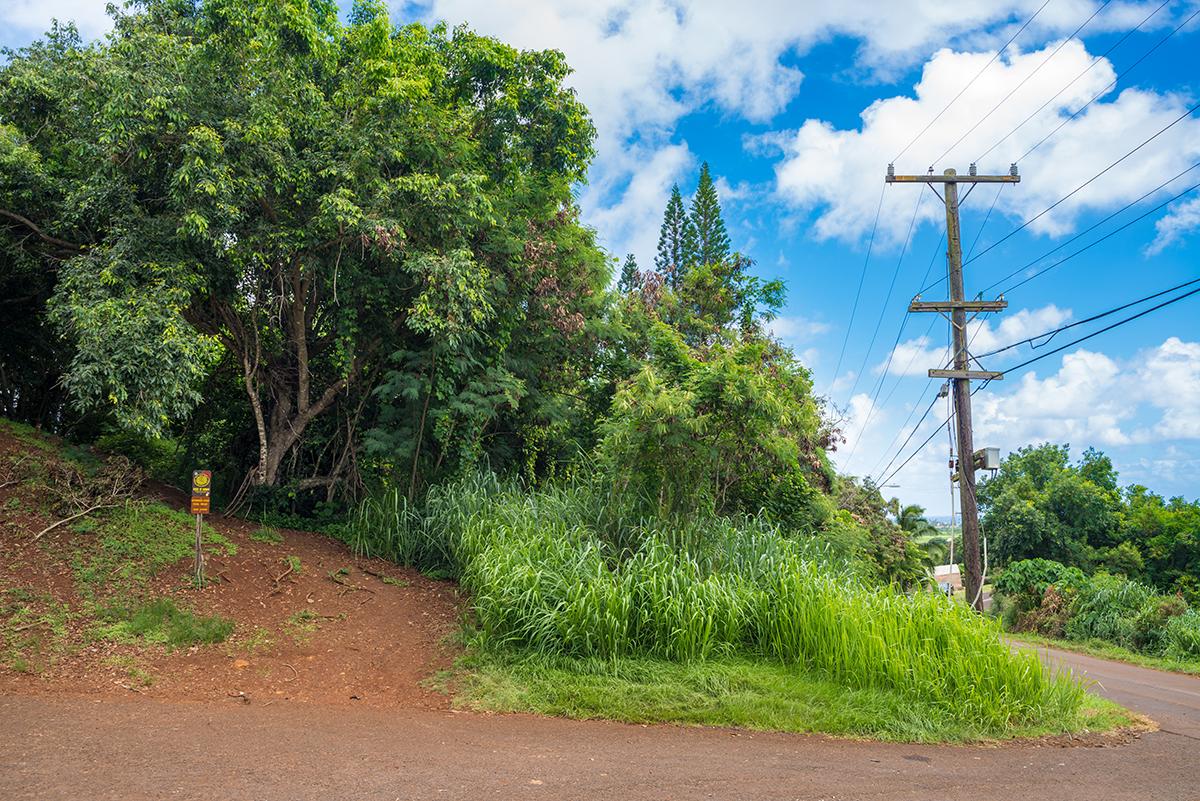Начало пути по восточной тропе Нуну - Haleilio Rd