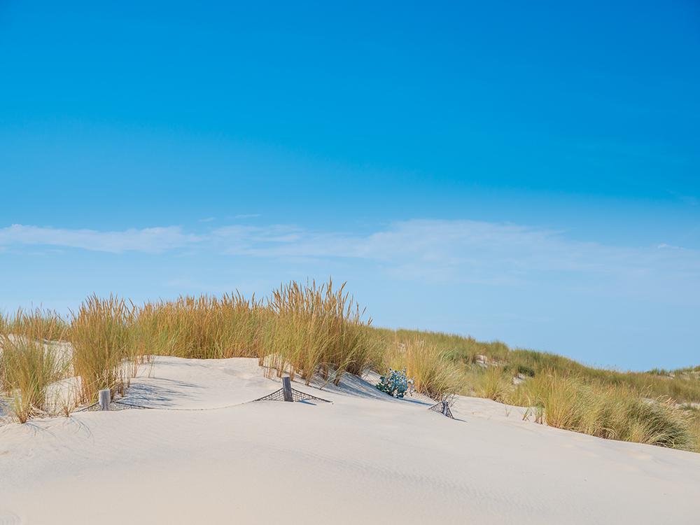 Дюны пляжа Уртен