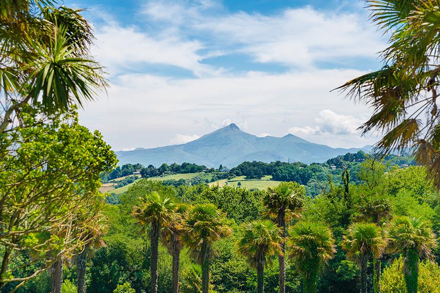 Вдалеке - восочайшая гора Страны Басков - Ля Рюн (La Rhune)